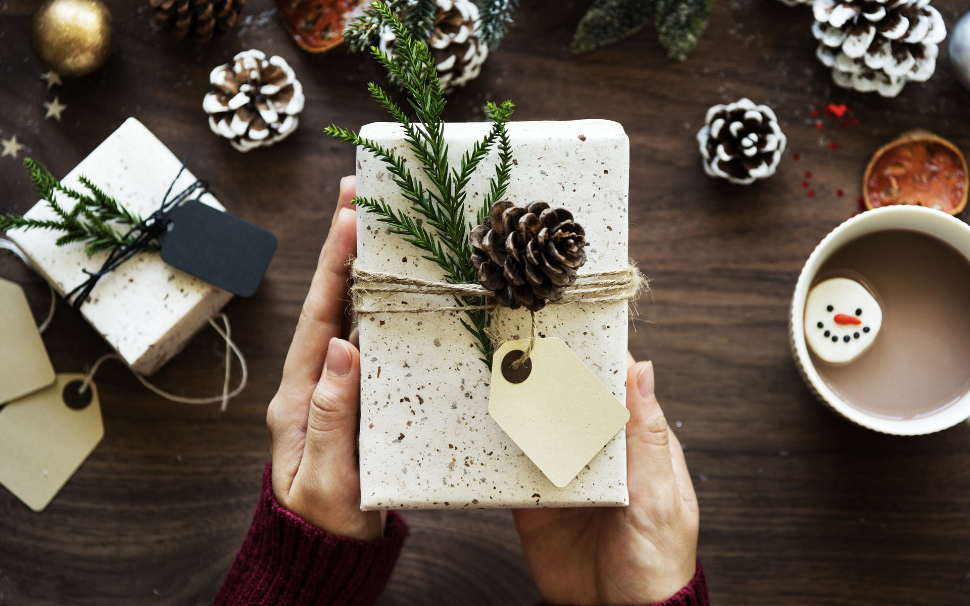 Why a Central Vac Would be a Good Holiday Gift